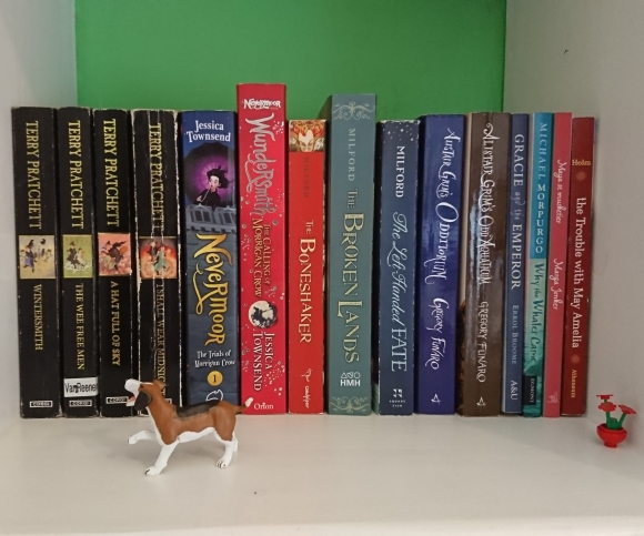 Bookshelf with toy dog in front of books